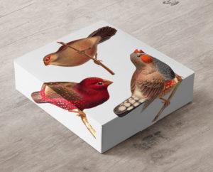 Gift-Box-Mockup-4
