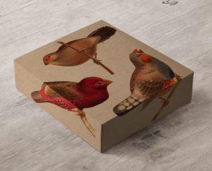 Gift-Box-Mockup-5